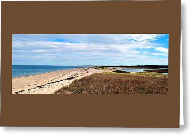 Sandy Neck Beach Greeting Card by Bill Driscoll