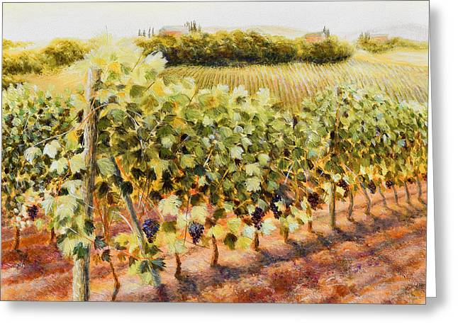 Sangiovese Sunset, Near Montepulciano Greeting Card by Duane Dorshimer