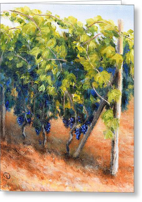 Sangiovese Vines, Near Montepulciano Greeting Card by Duane Dorshimer