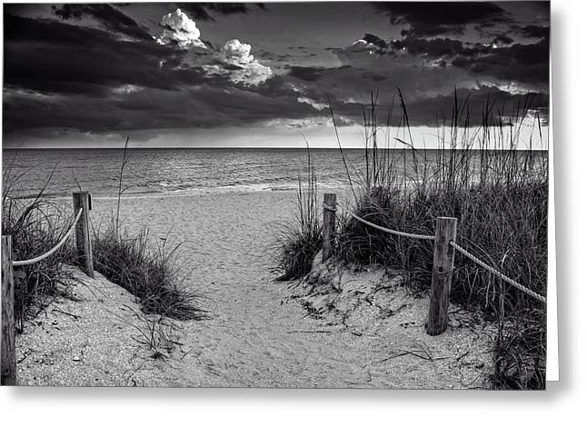 Sanibel Island Beach Access In Black And White Greeting Card