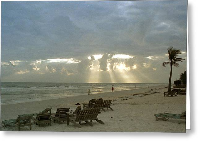Sanibel Island Fl Greeting Card by Mark Fuller
