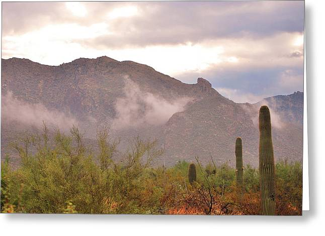 Santa Catalina Mountains II Greeting Card