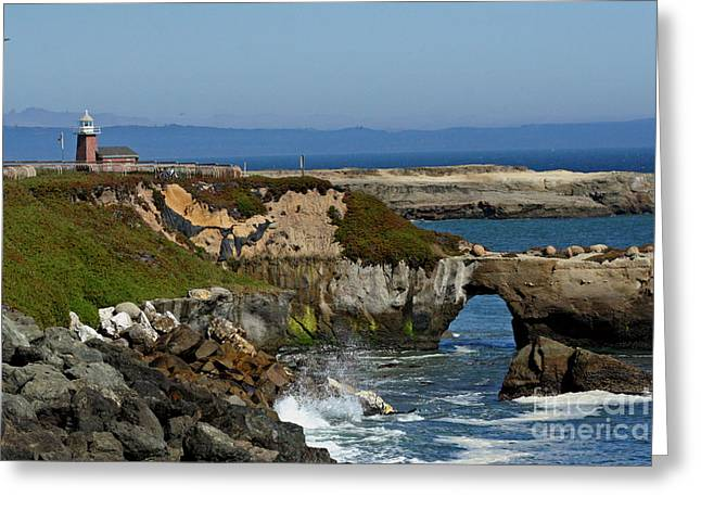 Santa Cruz Ca Greeting Card