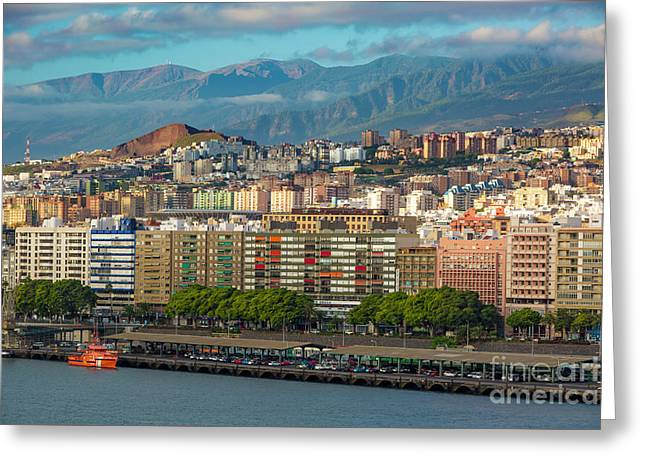 Santa Cruz De Tenerife Greeting Card by Brian Jannsen