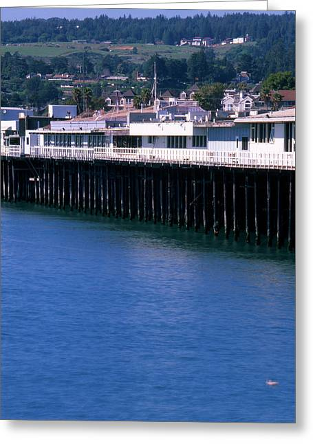 Santa Cruz Pier Greeting Card by Soli Deo Gloria Wilderness And Wildlife Photography