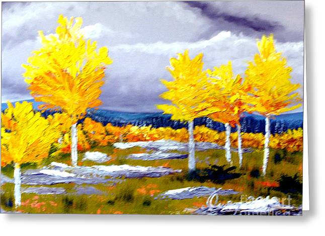 Santa Fe Aspens Series 2 Of 8 Greeting Card