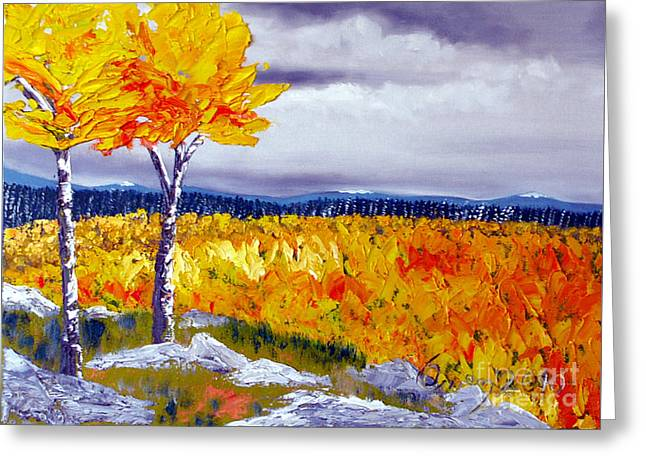 Santa Fe Aspens Series 7 Of 8 Greeting Card