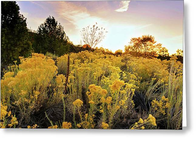 Greeting Card featuring the photograph Santa Fe Magic by Stephen Anderson