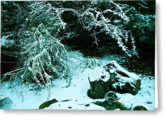 Santa Fe Snow Greeting Card by Chuck Taylor