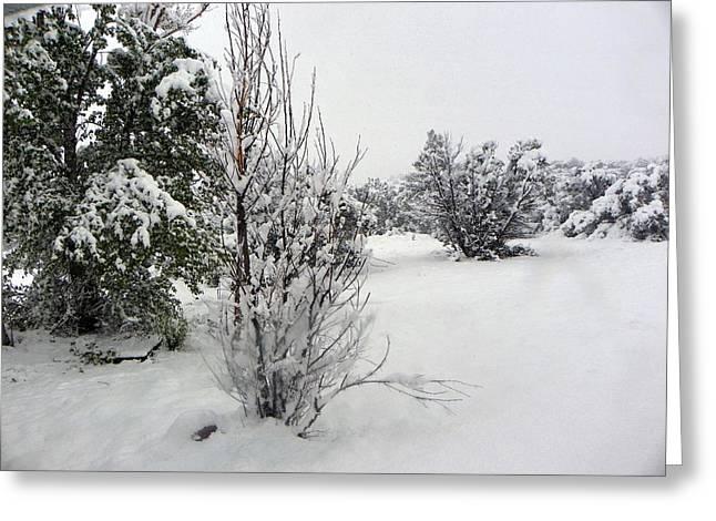 Santa Fe Snowstorm 2017 Greeting Card
