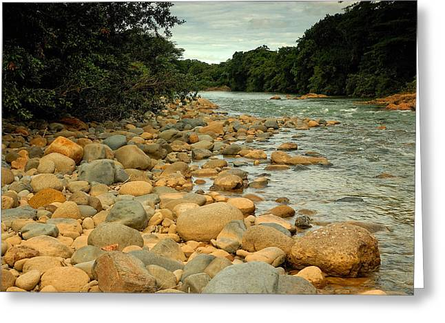 Santa Maria River Greeting Card by Iris Greenwell
