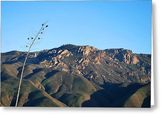 Greeting Card featuring the photograph Santa Monica Mountains View  by Matt Harang