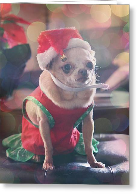 Santa's Little Helper Greeting Card by Laurie Search