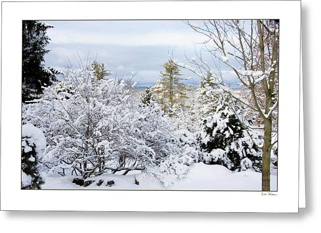 Saratoga Winter Scene Greeting Card by Lise Winne