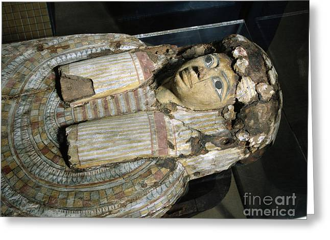 Sarcophagus Of Egyptian Mummy, 323 Greeting Card by Wellcome Images