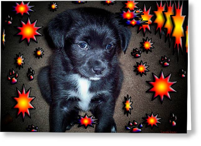 Sasha Greeting Card by Robert Orinski