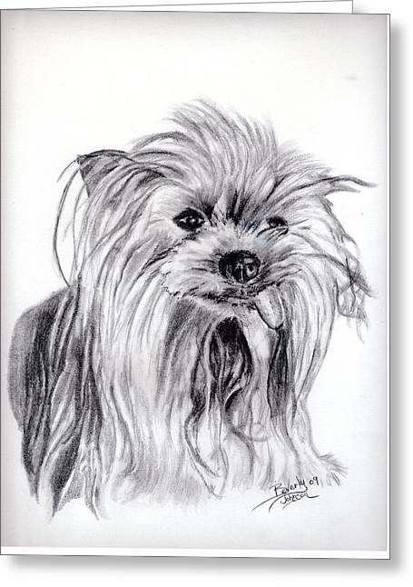 Yorkie Lady Greeting Card by Beverly Johnson