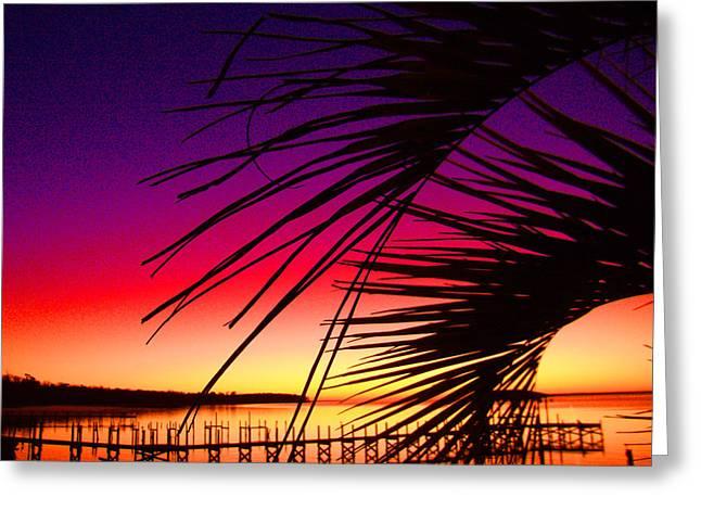 Saturated Sunrise Greeting Card by Nicole I Hamilton