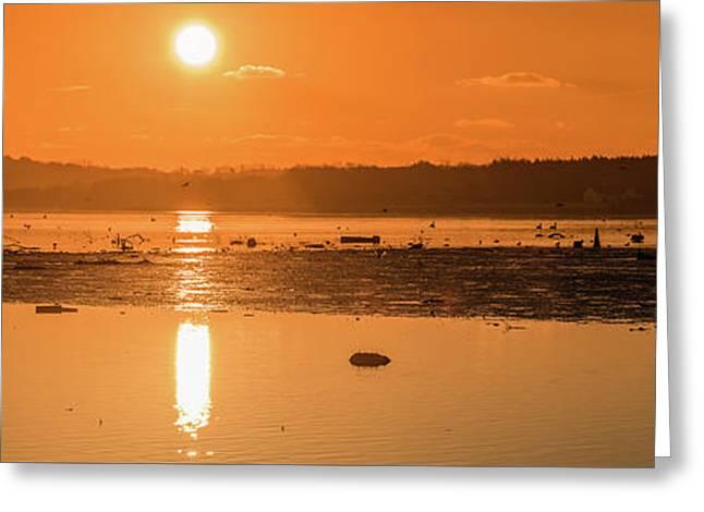 Saturday Morning Along The Estuary Pano Greeting Card by Martina Fagan