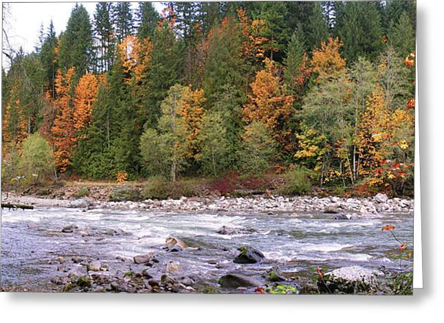 Sauk River Fall Colors Panorama Greeting Card by Mary Gaines