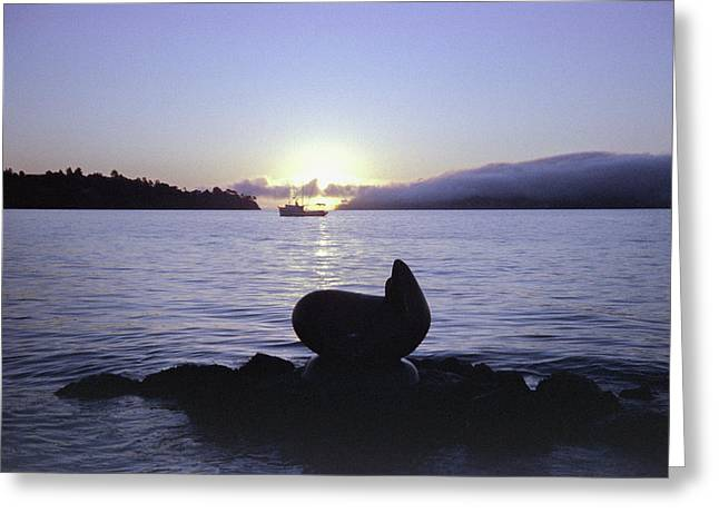 Sausalito Morning Greeting Card
