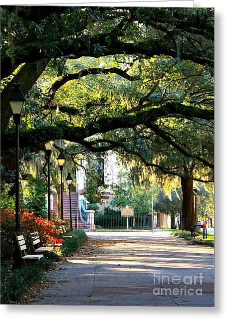 Savannah Park Sidewalk Greeting Card by Carol Groenen