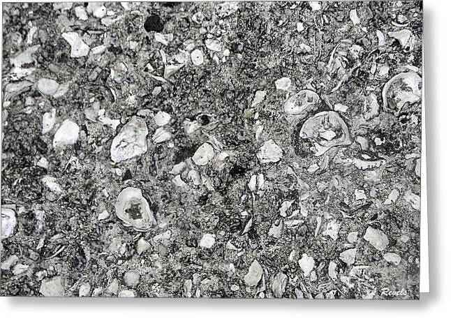 Savannah Sidewalk Of Shells Greeting Card by Leslie Revels Andrews