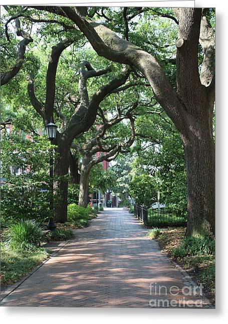 Savannah Sidewalk With Trees Greeting Card by Carol Groenen