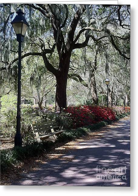 Savannah Spring Walk Greeting Card