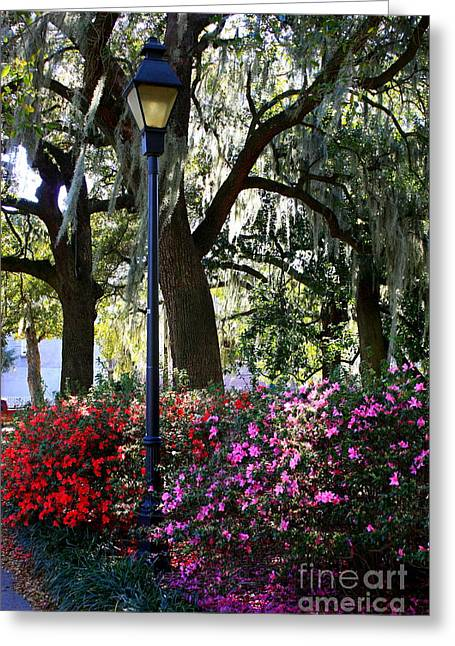 Savannah Street Lamp In Springtime Greeting Card by Carol Groenen