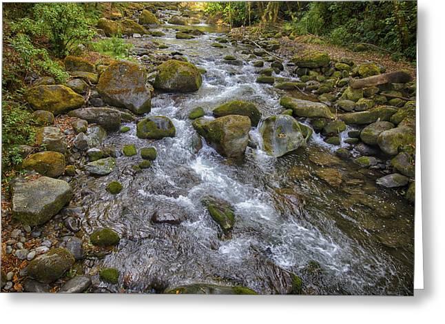 Savegre River - Costa Rica 2 Greeting Card
