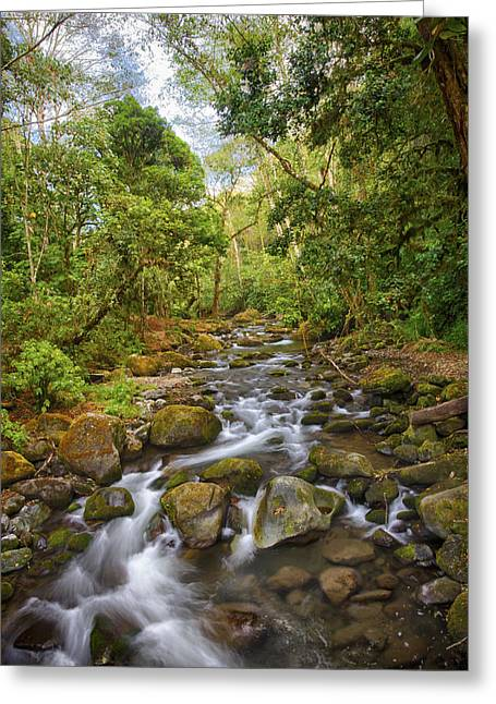 Savegre River - Costa Rica 5 Greeting Card