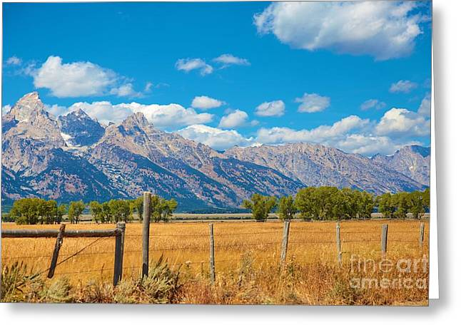 Greeting Card featuring the photograph Saw Tooth Mountains  by Robert Pearson