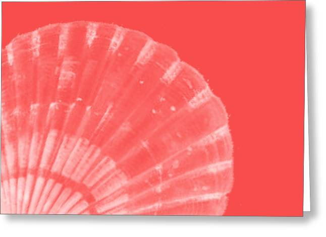 Scallop Shell Greeting Card by Bonnie Bruno