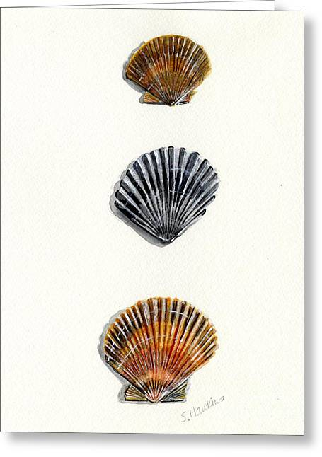 Scallop Shell Trio Greeting Card by Sheryl Heatherly Hawkins