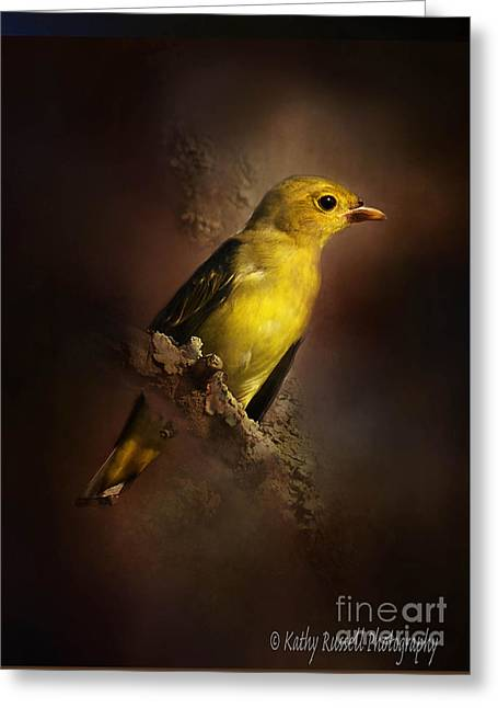 Scarlet Tanager Greeting Card by Kathy Russell