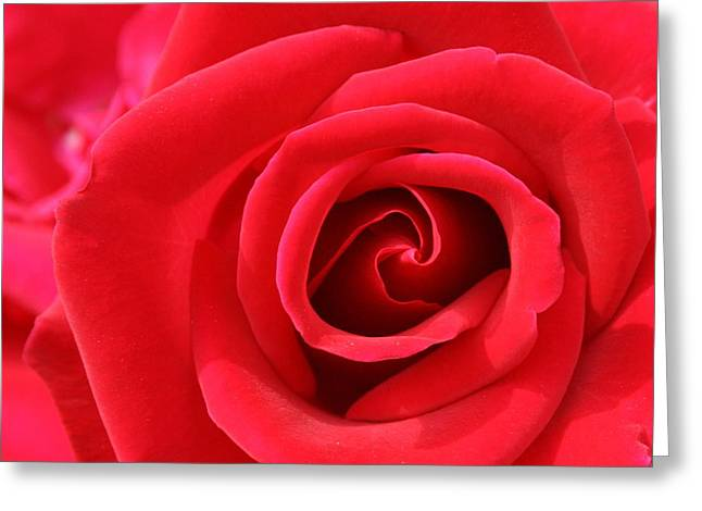 Scarlet Vortex Greeting Card