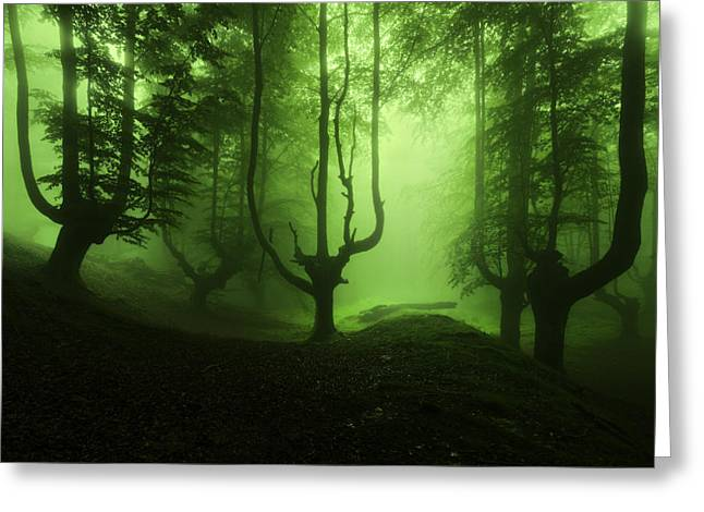 The Funeral Of Trees Greeting Card