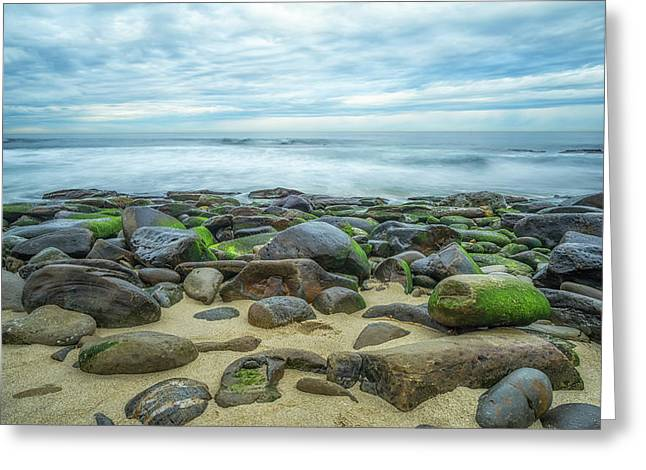 Scattered Greeting Card by Joseph S Giacalone