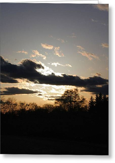 Scattered Shadows Greeting Card by Mark  France