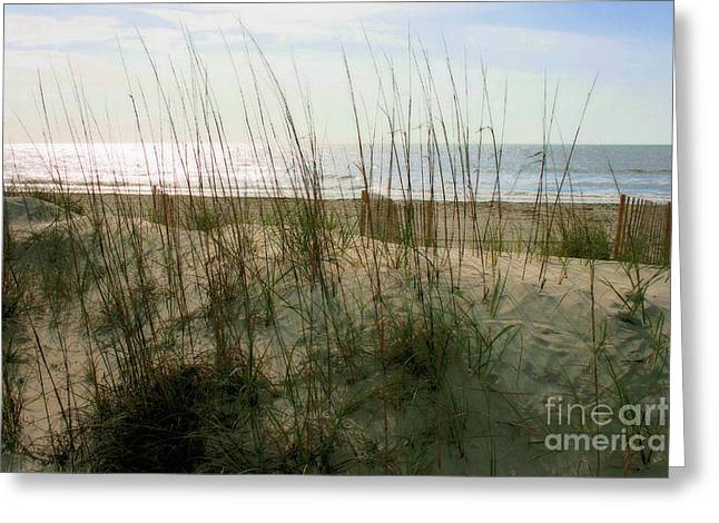 Scene From Hilton Head Island Greeting Card