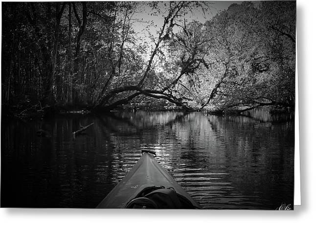 Scenes From A Kayak, No. 8 Greeting Card