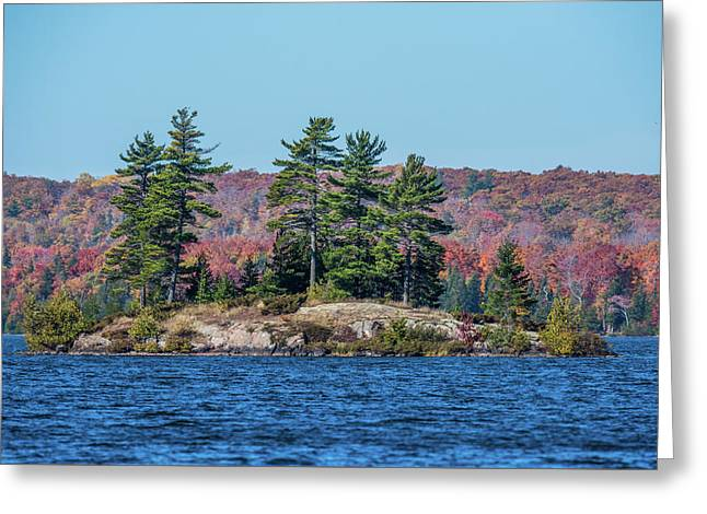 Greeting Card featuring the photograph Scenic Fall View by Paul Freidlund