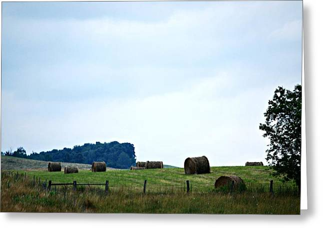 Scenic Haybales #2 Greeting Card by Barbara Woodson