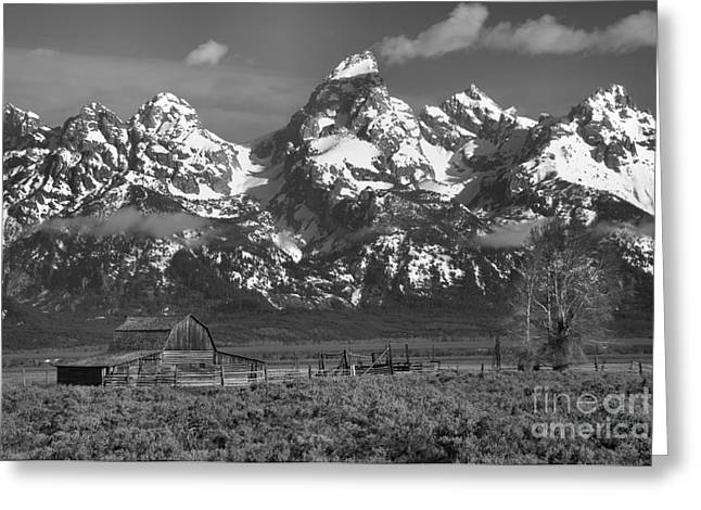 Scenic Mormon Homestead Black And White Greeting Card by Adam Jewell