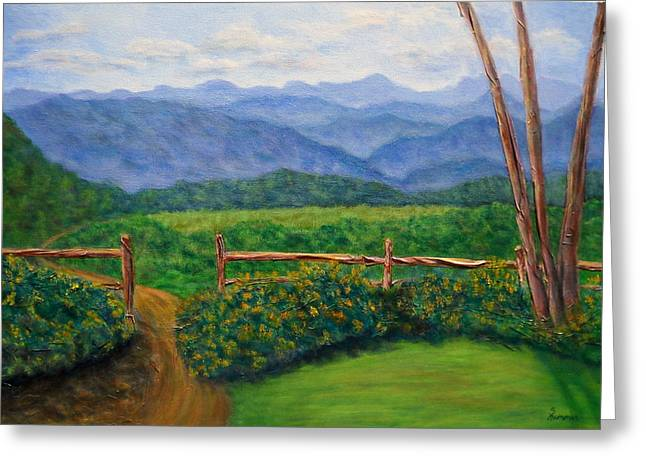 Scenic Overlook Greeting Card by Sandy Hemmer