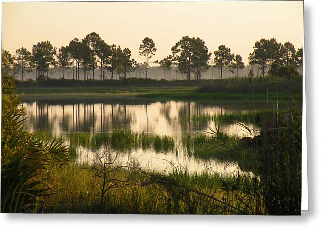 Scenic Reflections After Sunrise Greeting Card by Rosalie Scanlon