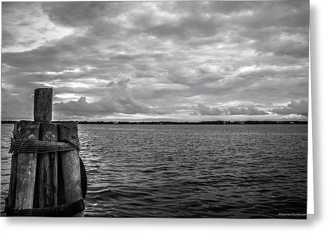 Scenic St. Andrews Bay  Greeting Card by Debra Forand