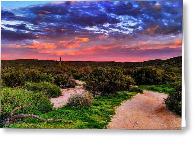 Greeting Card featuring the photograph Scenic Trailhead by Anthony Citro