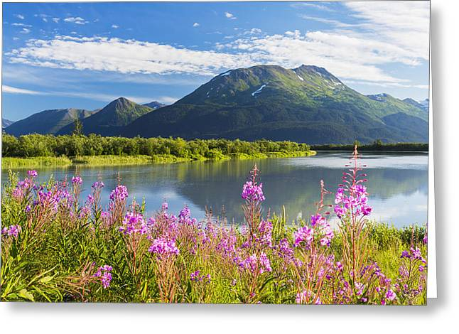 Scenic View Of Fireweed And Portage Greeting Card